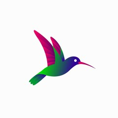 hummingbird vector, hummingbird template