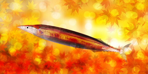 紅葉 さんま 秋  背景