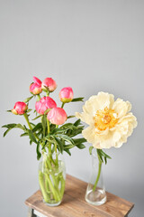 Bud and opening into a flower. Coral peonies in a glass vase on wooden table. Beautiful peony flower for catalog or online store. Floral shop concept . Beautiful fresh cut bouquet. Flowers delivery.
