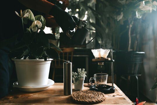Vietnamese filtered or poured Vietnamese coffee dripping beer is a method that involves pouring water over the ground roasted coffee beans contained in a filter coffee shop in Asia.