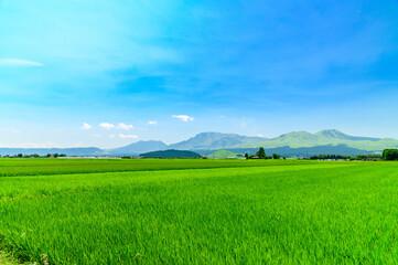 最高に美しい晴天空の阿蘇市街から阿蘇五岳風景 日本 熊本県 阿蘇2020年 Aso Godake scenery from Aso city in the most beautiful clear sky Japan Kumamoto Prefecture Aso 2020