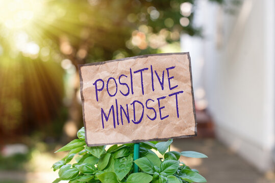 Writing note showing Positive Mindset. Business concept for mental attitude in which you expect favorable results Plain paper attached to stick and placed in the grassy land