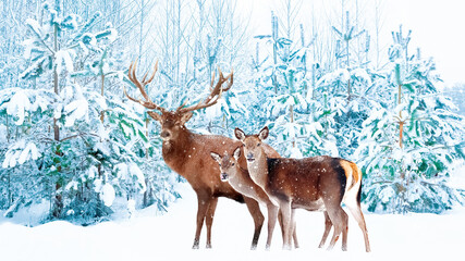 Noble deer male and female in a snowy winter forest. Christmas fantasy image in blue and white color. Snowing.