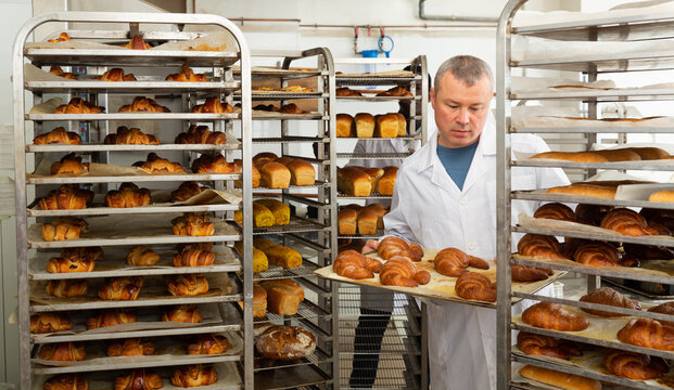 Skilled successful baker arranging trays with freshly baked bakery products on trolley..