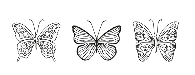 Graceful sketch line hand drawn butterflies on white isolated background. Beautiful sevenfold insects with ornaments on the wings. Diekora print for interior, coloring, cute pattern. Childrens cute