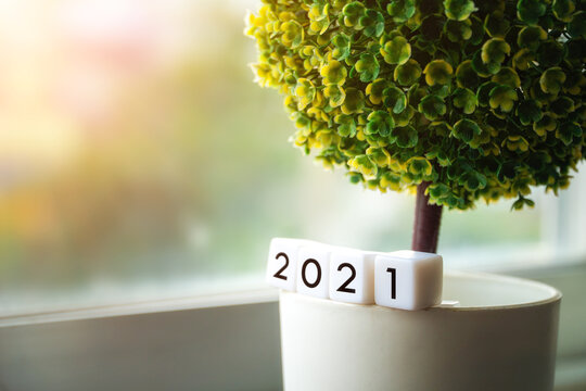 """Small green tree with white dice """"2021"""" text of year on blur background."""