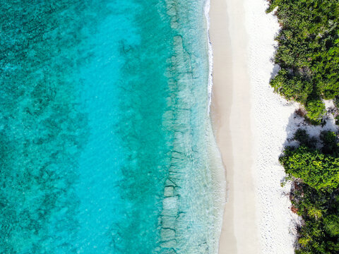 Waves on beach with palm trees in the Caribbean, drone photo