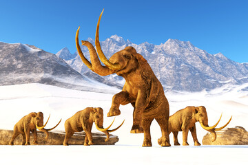 Columbian Mammoth - A herd of Columbian Mammoths navigate their way through a mountain range to get to a warmer climate.