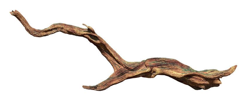 driftwood isolated on white background, aged wood