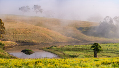 A foggy day in the country with rural farmland and dam