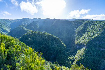 Panoramic view of the Cubo de la Galga natural park on the northeast coast on the island of La Palma, Canary Islands. Spain