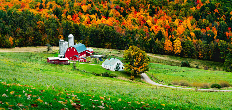 Rustic farm scene in rural vermont during autumn with fall colors changing and a bountiful harvest and a traditional American scene depicting home for the holidays