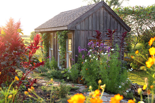Little Rustic Cottage Like Garden Shed Surrounded By Colorful Summer Flowers