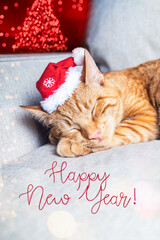 Happy New Year with cute cat in santa hat
