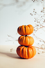 Tine orange Pumpkins. Autumn concept