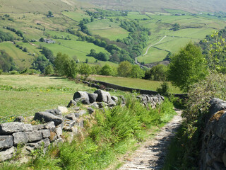 narrow country lane surrounded by stone walls and ferns in a west yorkshire dales landscape in the calder valley