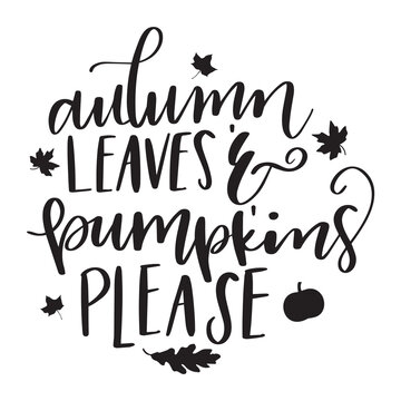 Autumn leaves and pumpkins please vector graphic illustration drawing isolated on white background back white orange green yellow