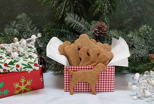 A gift box of peanut butter dog cookies in a Christmas setting.