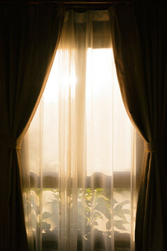 Curtains with sun and leaves