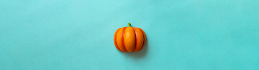 Pumpkin on color background. Halloween, harvest, etc. カラー背景上のカボチャ。ハロウィン、収穫など