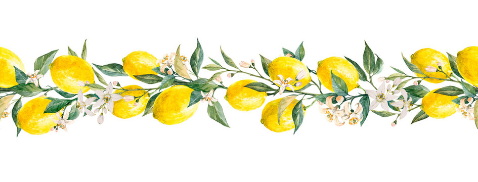 Beautiful horizontal seamless pattern with watercolor yellow lemon fruits, leaves and flowers. Stock illustrations,.