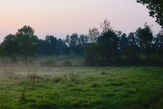 Early morning view of a field with some mist just above the ground.