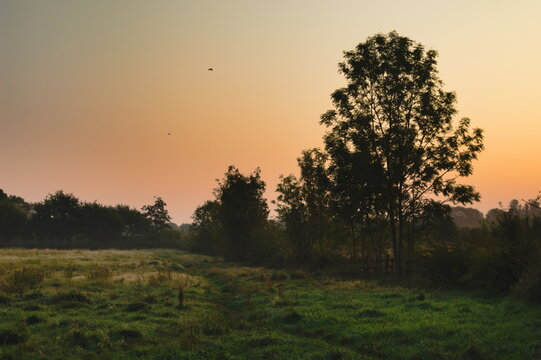 Sunrise over a grassy field in North East Lincolnshire