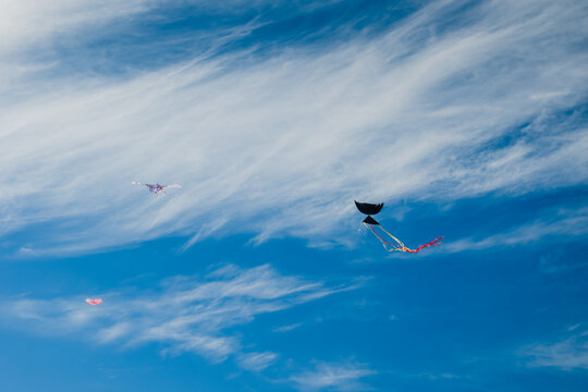 Kites were flying high in the clear blue sky.Kite was flying high in the clear blue sky.