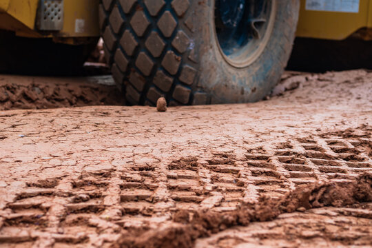 Bulldozer tire tracks on wet clay