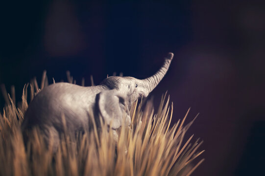 A toy elephant in tall grass against a black sky