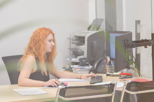 An administrative employee works in front of the computer. Team of young people on a working day in a farm administration office in Spain