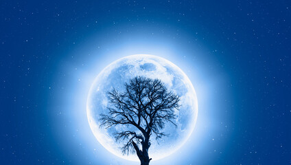Wall Mural - Lone dead tree with super full blue Moon -