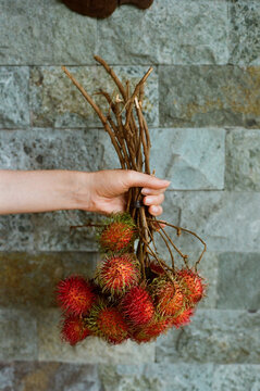Woman holding banch of rambutan fruits