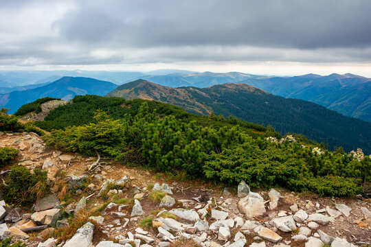 view from the top of a mountain. cloudy autumn scenery. mountain range behind the valley in the distance. dramatic weather in colorful scenery