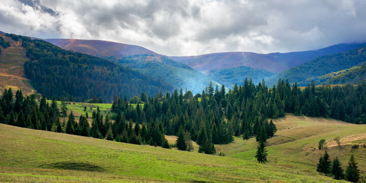 autumnal countryside landscape. beautiful mountain scenery on a cloudy day. green fields rolling through hills in to the forest at the foot of the ridge