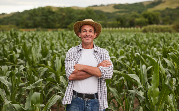 Confident mature farmer in agricultural field