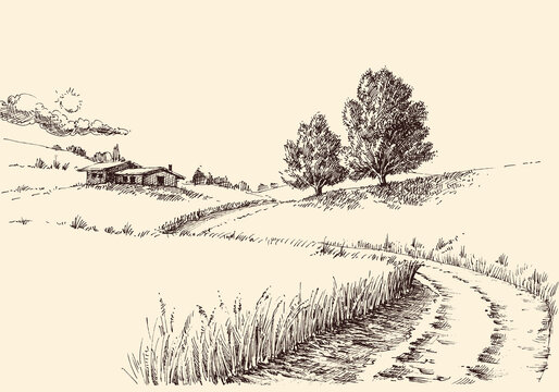 A path to a farm landscape hand drawing