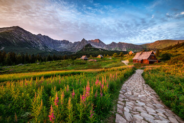 Beautiful summer sunrise in the mountains - Hala Gasienicowa in Poland - Tatras