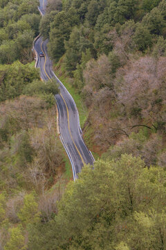 Sequoia National Park Aerial View of Windy Road