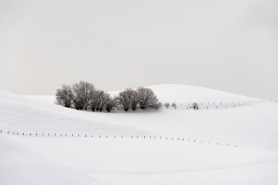 Tranquil winter scene