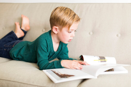 Boy (2-3) reading book on sofa