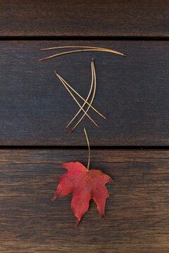 Single Autumn Leaf with Pine Needles