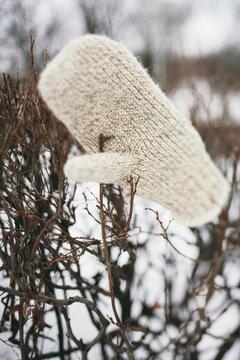 lost wool mitten