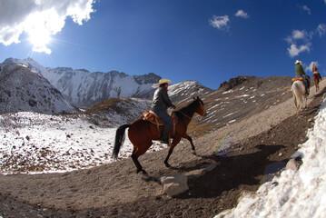 Fototapeta silueta caballo volcán Nevado de Toluca obraz