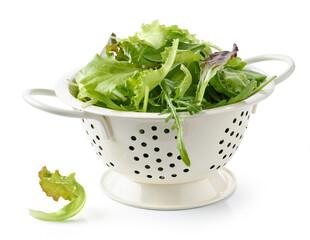 fresh green lettuce leaves in colander