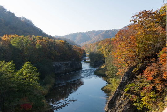 紅葉の渓谷(夕張川)