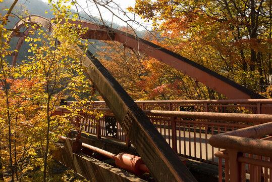 紅葉の葉に囲まれた千鳥橋
