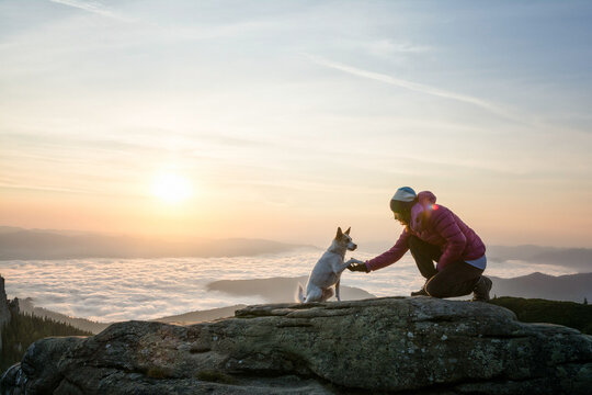 Dog shaking paw with the owner in a beautiful sunrise