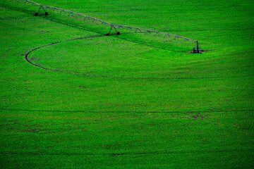 Irrigation Sprinkler Equipment on Lush Green Field