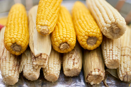 Stack of various corn cobs at food market